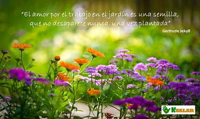 Frases para enamorados de la jardinería y las flores